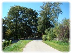 Grüngestaltung in Hangen-Weisheim